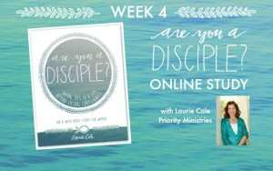 Why I'm hijacking Laurie's Are You a Disciple Post