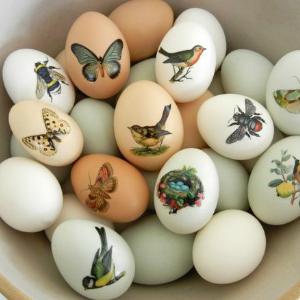 7 Creative Ways to dye Easter Eggs - Tattoo Easter Eggs